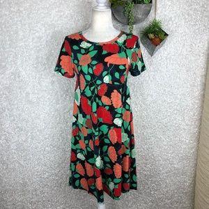 LuLaRoe Floral Print Carly Swing Dress | XS